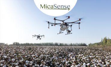 Drones en agricultura: Tome mejores decisiones con información sobre su cultivo
